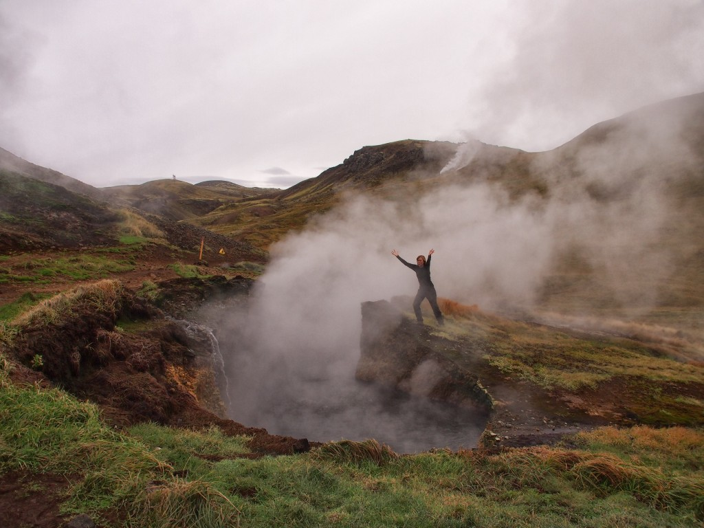 After the ADMB Developers' Meeting, I investigated the thermal activity in Iceland.
